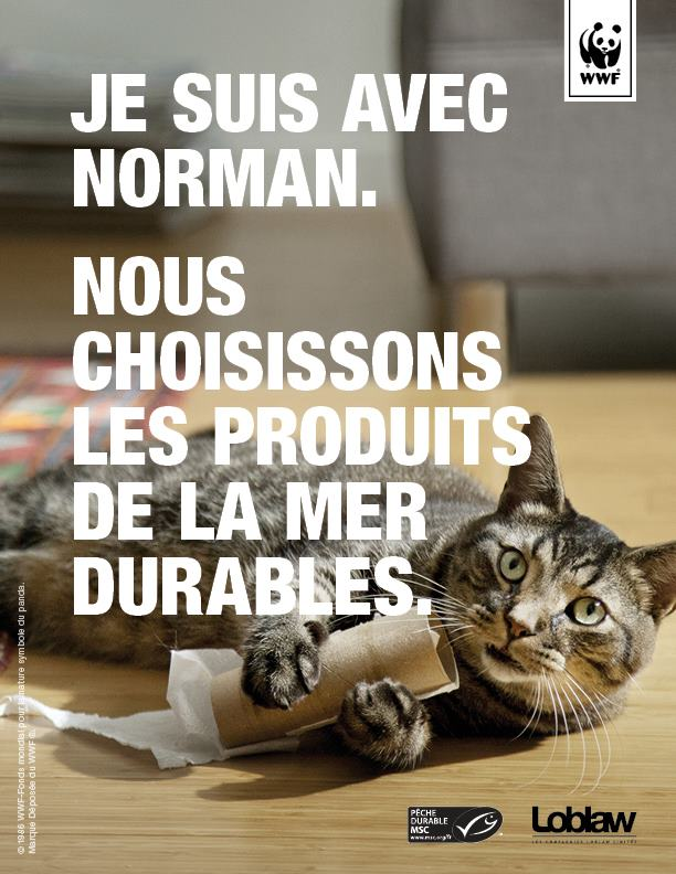 Norman-WWF-chat-peche-campagne-publicite-ong-video